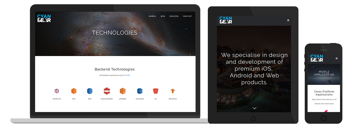 Cyan Bear Web Design preview